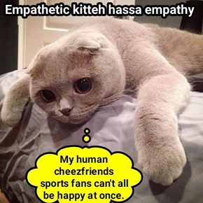 Empathetic kitteh hassa empathy   (recaption: http://tinyurl.com/hd3nrae