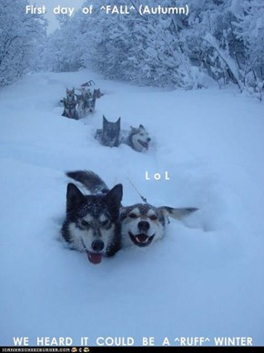 First  day  of  ^FALL^ (Autumn)              L o L WE  HEARD  IT  COULD  BE  A ^RUFF^ WINTER