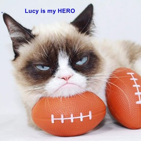 .             Lucy is my HERO