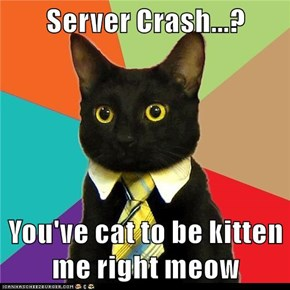 Server Crash...?  You've cat to be kitten me right meow