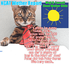 KCAT AccuWether: All teh Wether ebery day! 100% ackuret!