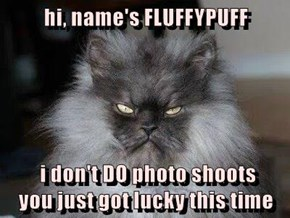 hi, name's FLUFFYPUFF   i don't DO photo shoots                                                             you just got lucky this time
