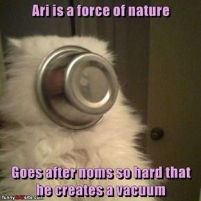 Ari is a force of nature  Goes after noms so hard that he creates a vacuum