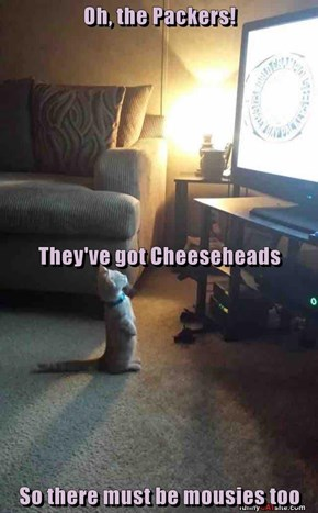 Oh, the Packers! They've got Cheeseheads So there must be mousies too