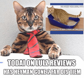 LULZ REVIEW