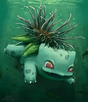 Sea Anemone Bulbasaur Loves to Swim