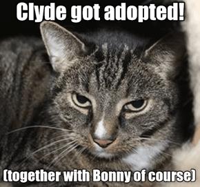 Clyde Got Adopted!