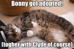 Bonny Got Adopted!