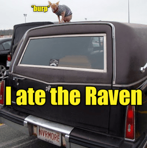 "The Raven Is ""Nevermore"""