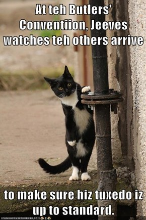 At teh Butlers' Conventiion, Jeeves watches teh others arrive  to make sure hiz tuxedo iz up to standard.