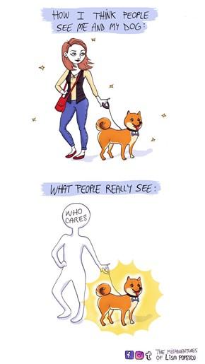I Only See Doge