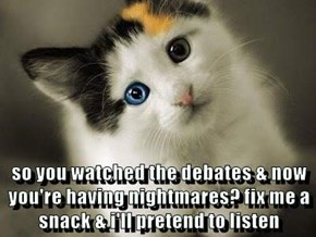 so you watched the debates & now you're having nightmares? fix me a snack & i'll pretend to listen