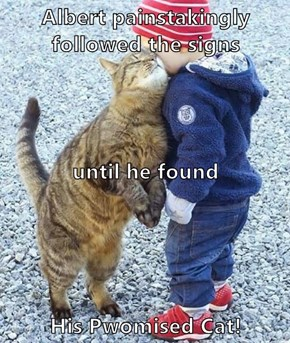 Albert painstakingly followed the signs until he found His Pwomised Cat!