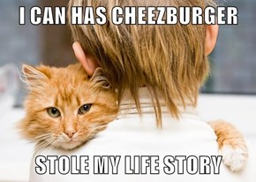 I CAN HAS CHEEZBURGER  STOLE MY LIFE STORY