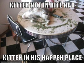 KITTEH NOT IN RITE NAO  KITTEH IN HIS HAPPEH PLACE