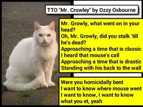"""Mr. Growly"" (TTO ""Mr. Crowley"" by Ozzy Osbourne) (recaption: http://tinyurl.com/jlhgwcm"