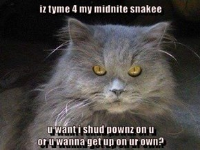 iz tyme 4 my midnite snakee  u want i shud pownz on u                                                                                                     or u wanna get up on ur own?