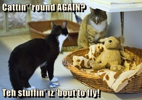 Cattin' 'round AGAIN?  Teh stuffin' iz 'bout to fly!
