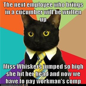 The next employee who brings in a cucumber will be written up  Miss Whiskers jumped so high she hit her head and now we have to pay workman's comp