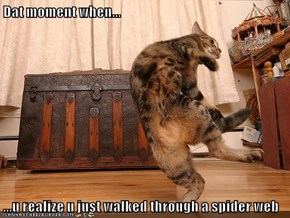 Dat moment when...  ...u realize u just walked through a spider web
