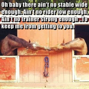 Oh baby there ain't no stable wide enough. Ain't no rider low enough, Ain't no trainer strong enough ..To keep me from getting to you.