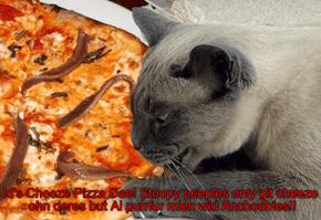 Cheezey Pizza Dae!