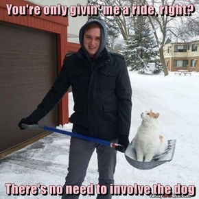 Just Reminding You That This Is a Snow Shovel, and NOT a Pooper-Scooper!