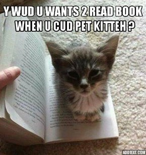Today is National Read a Book Day but EVRYDAI is Pet a Kitteh Dai!