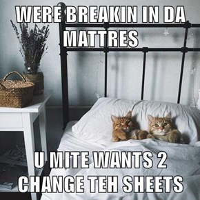 WERE BREAKIN IN DA MATTRES  U MITE WANTS 2 CHANGE TEH SHEETS