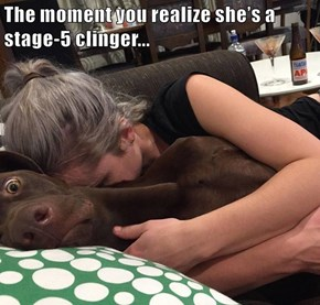 The moment you realize she's a stage-5 clinger...