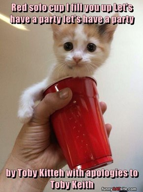 Red solo cup I fill you up Let's have a party let's have a party  by Toby Kitteh with apologies to Toby Keith