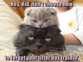 Hey, Kid, don't choose now   to forget your litter box trainin'