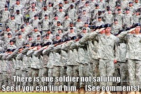 There is one soldier not saluting.....                                               See if you can find him.     (See comments)