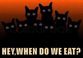 HEY,WHEN DO WE EAT?