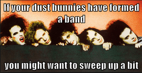If your dust bunnies have formed a band  you might want to sweep up a bit