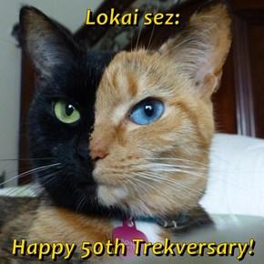 Lokai sez:  Happy 50th Trekversary!
