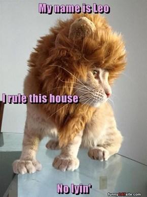 My name is Leo I rule this house No lyin'