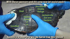 With these sponsors and this new rear jet assist pack  Speedy is a shoo-in to win the Sprint Cup this season