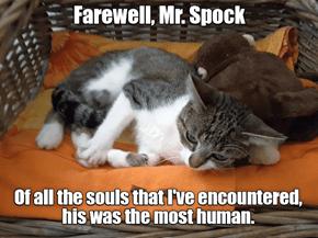 Mr. Spock :-(