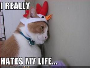 I REALLY  HATES MY LIFE...