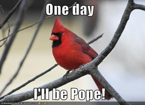 One day  I'll be Pope!