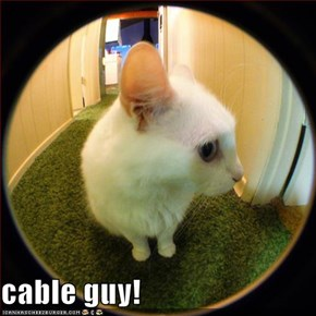 cable guy!