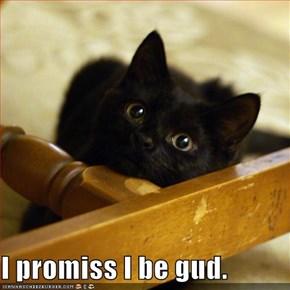 I promiss I be gud.