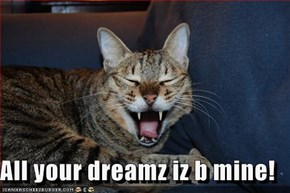 All your dreamz iz b mine!
