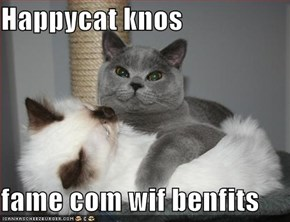Happycat knos  fame com wif benfits