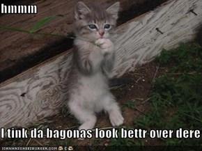 hmmm  I tink da bagonas look bettr over dere