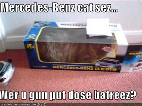 Mercedes-Benz cat sez...  Wer u gun put dose batreez?