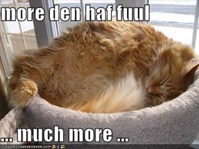 more den haf fuul  ... much more ...