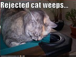 Rejected cat weeps...
