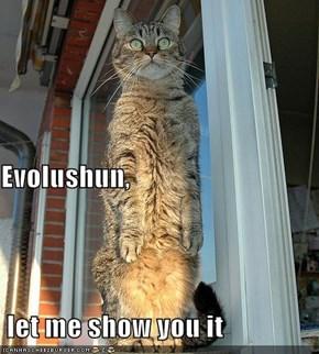 Evolushun,  let me show you it